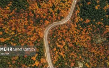 تصاویر جادوی رنگهای پاییزی,عکس های جاده,تصاویر جاده های پاییزی