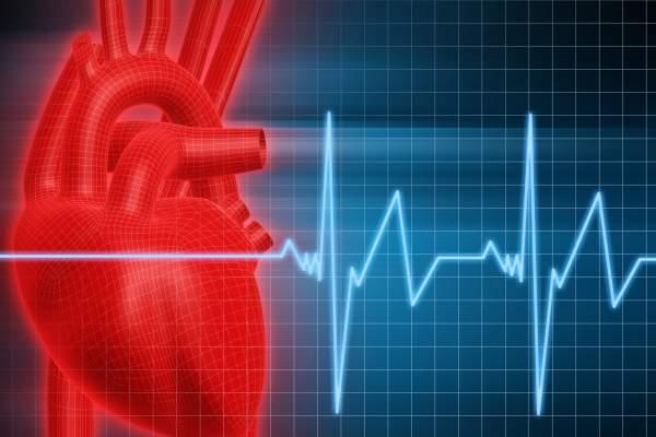 قلب,قلب سالم,روشهایی برای داشتن قلب سالم