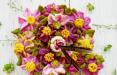 عکس های کیک های گیاهی آشپز آلمانی,تصاویرکیک های گیاهی آشپز آلمانی,تصاویرشیرینی های گیاهی