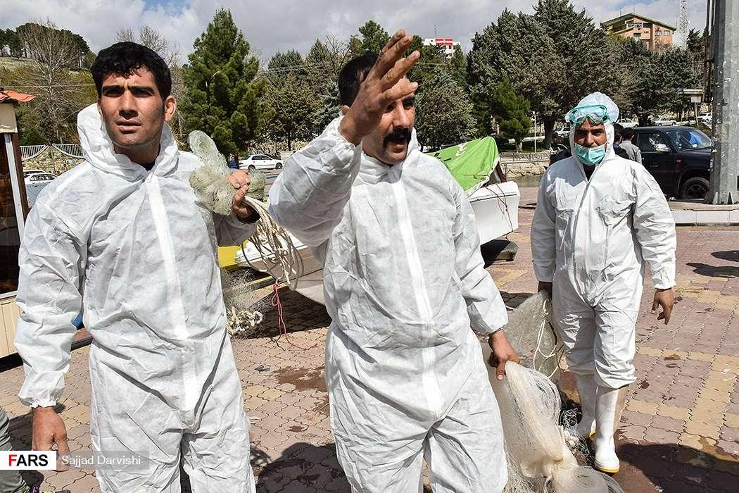 تصاویر آنفلوانزای پرندگان در خرمآباد,عکس های آنفلوانزای فوقحاد پرندگان,تصاویر شیوع آنفلوآنزا در دریاچه کیو خرمآباد