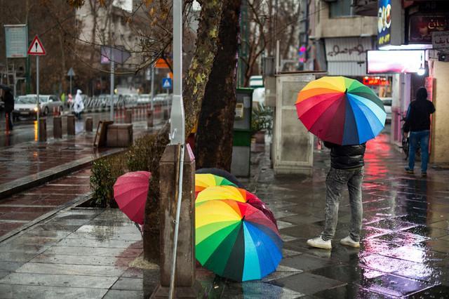بارش باران,اخبار اجتماعی,خبرهای اجتماعی,محیط زیست