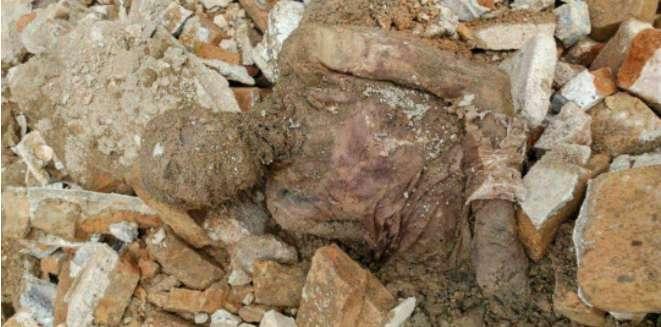 جسد مومیایی منصوب به رضا خان,اخبار پزشکی,خبرهای پزشکی,بهداشت