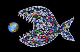 آلودگی ریزپلاستیکی,اخبار علمی,خبرهای علمی,طبیعت و محیط زیست