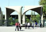 دانشگاه تهران,اخبار دانشگاه,خبرهای دانشگاه,دانشگاه