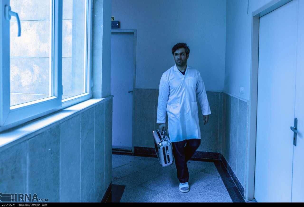 تصاویر مانتیس مشت زن کوچک,عکس های حشره مانتیس ایرانی,عکسهای محمودکل نگری و مانتیس ایرانی