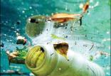 زباله های پلاستیکی,اخبار علمی,خبرهای علمی,طبیعت و محیط زیست