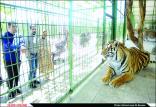 باغ وحش,اخبار علمی,خبرهای علمی,طبیعت و محیط زیست