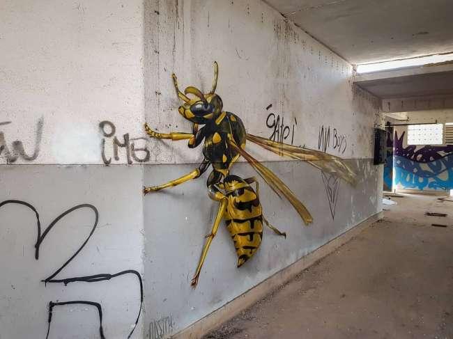 تصاویرهنرهای خیابانی,تصاویر نقاشی های سه بعدی,تصاویرنقاشی های برجسته حشرات