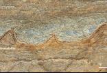 قدیمی ترین فسیل ها,اخبار علمی,خبرهای علمی,طبیعت و محیط زیست