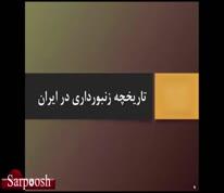 ویدئو/از تاریخچه زنبورداری تا زنبورداری مدرن در ایران