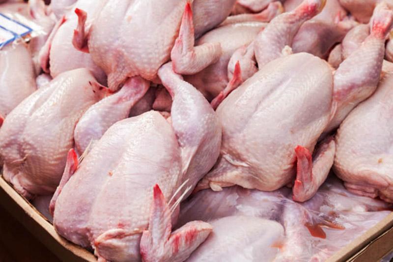 قیمت مرغ,اخبار اقتصادی,خبرهای اقتصادی,کشت و دام و صنعت