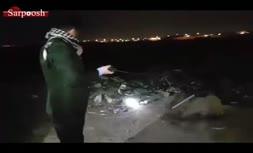 فیلم/ کشف جسد صدها سگ سوخته در اطراف شهر اهواز