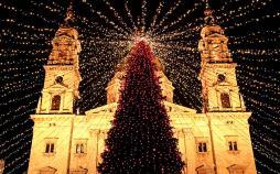 تصاویر درختان کریسمس,عکس های جذاب ترین درختان کریسمس,تصاویر عجیب ترین درختان کریسمس