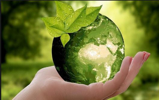 تبدیل زباله به سوخت,اخبار علمی,خبرهای علمی,اختراعات و پژوهش