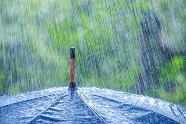 بارندگی,نهاد های آموزشی,اخبار آموزش و پرورش,خبرهای آموزش و پرورش