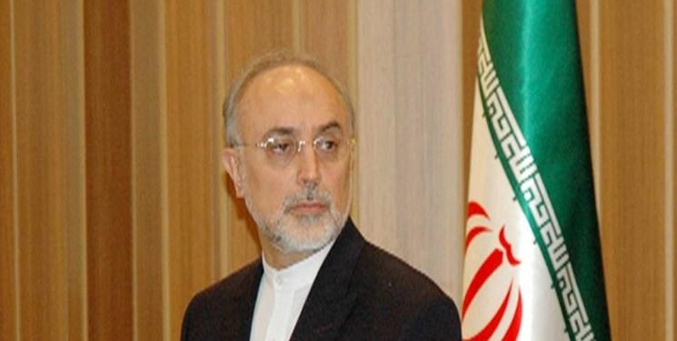علی اکبر صالحی,اخبار سیاسی,خبرهای سیاسی,سیاست خارجی