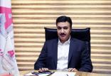 علیرضا کیانی,اخبار اقتصادی,خبرهای اقتصادی,تجارت و بازرگانی
