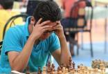 شطرنج,اخبار پزشکی,خبرهای پزشکی,مشاوره پزشکی