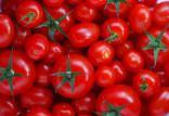 گوجه فرنگی,اخبار پزشکی,خبرهای پزشکی,مشاوره پزشکی