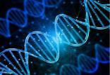 راهکاری نوین برای درمان سرطان,اخبار پزشکی,خبرهای پزشکی,تازه های پزشکی