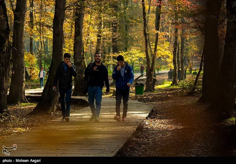 تصاویرطبیعت پاییزی گرگان, تصاویرگرگان,تصاویر پاییز