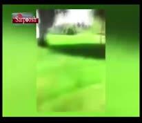 فیلم/  تفریح دیوانه وار چند جوان تهرانی؛ آتش زدن مردم در حین خواب!