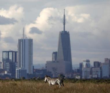تصاویر حیات وحش کنیا,عکسهای پارک ملی نایروبی,عکس های حیات وحش کنیا