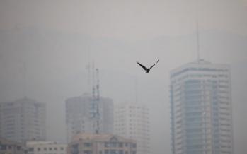 آلودگی هوا در تهران,اخبار اجتماعی,خبرهای اجتماعی,محیط زیست