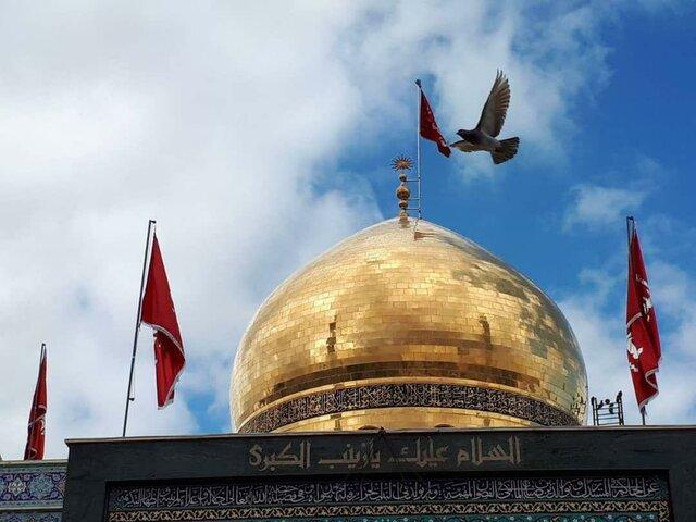 حرم حضرت زینب,اخبار مذهبی,خبرهای مذهبی,فرهنگ و حماسه