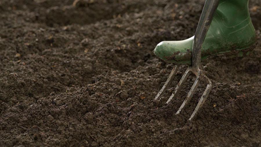 یخ زدن خاک,اخبار علمی,خبرهای علمی,طبیعت و محیط زیست