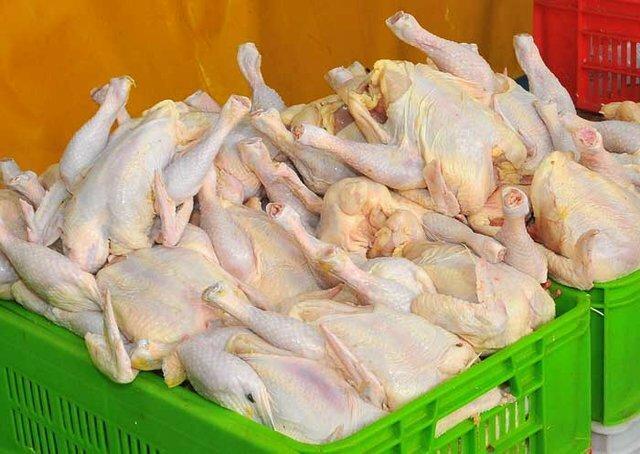 افزایش تولید ؛چاره کاهش قیمت مرغ