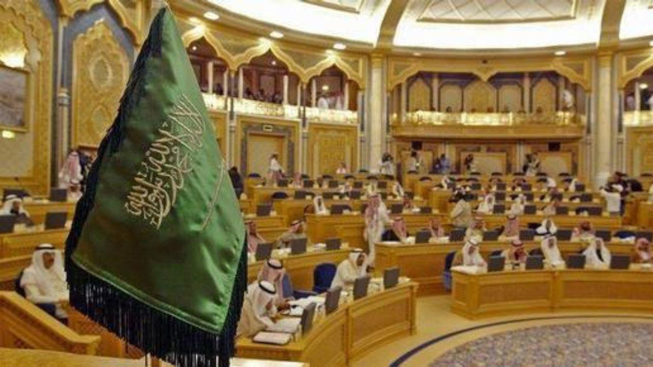 مجلس شورای عربستان,اخبار سیاسی,خبرهای سیاسی,خاورمیانه