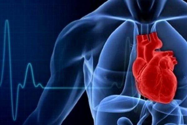 سلامت قلب,اخبار پزشکی,خبرهای پزشکی,تازه های پزشکی