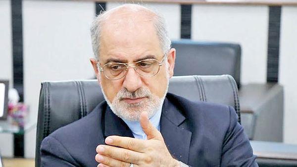 غلامرضا انصاری,اخبار سیاسی,خبرهای سیاسی,سیاست خارجی