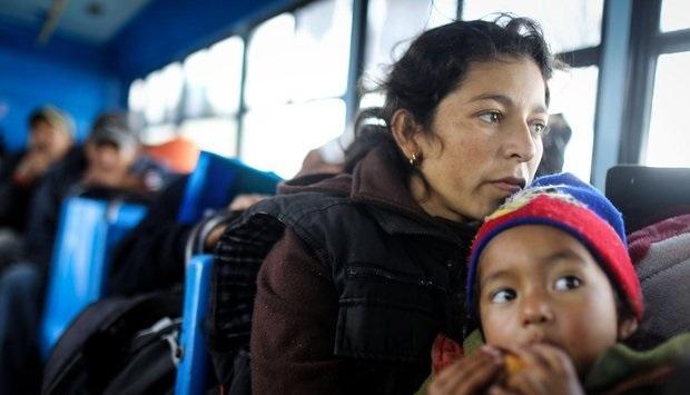 پناهجویان آلمان,اخبار اجتماعی,خبرهای اجتماعی,محیط زیست