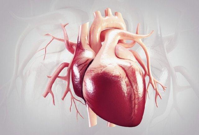 سلامت قلب,اخبار پزشکی,خبرهای پزشکی,مشاوره پزشکی
