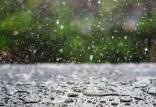 وضعیت بارندگی ها,اخبار اجتماعی,خبرهای اجتماعی,محیط زیست