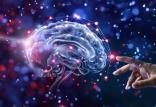 بازیابی خاطرات در مغز,اخبار پزشکی,خبرهای پزشکی,تازه های پزشکی