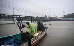 عکس طوفان پابوک درتایلند,تصاویرطوفان پابوک درتایلند,عکس خسارات طوفان پابوک درتایلند