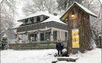 کتابخانه کوچک درختی,اخبار جالب,خبرهای جالب,خواندنی ها و دیدنی ها