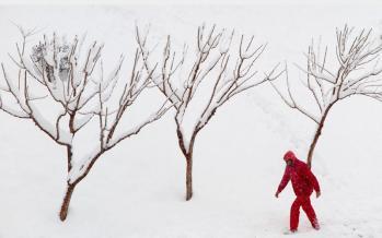 فصل زمستان,اخبار فرهنگی,خبرهای فرهنگی,کتاب و ادبیات