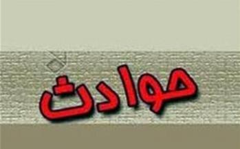 واژگونی سرویس مدرسه در کرمان,اخبار حوادث,خبرهای حوادث,حوادث