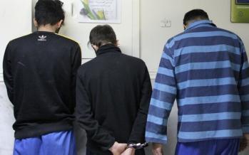 دستگیری سارقان میلیاردی شهرهای ایران,اخبار حوادث,خبرهای حوادث,جرم و جنایت