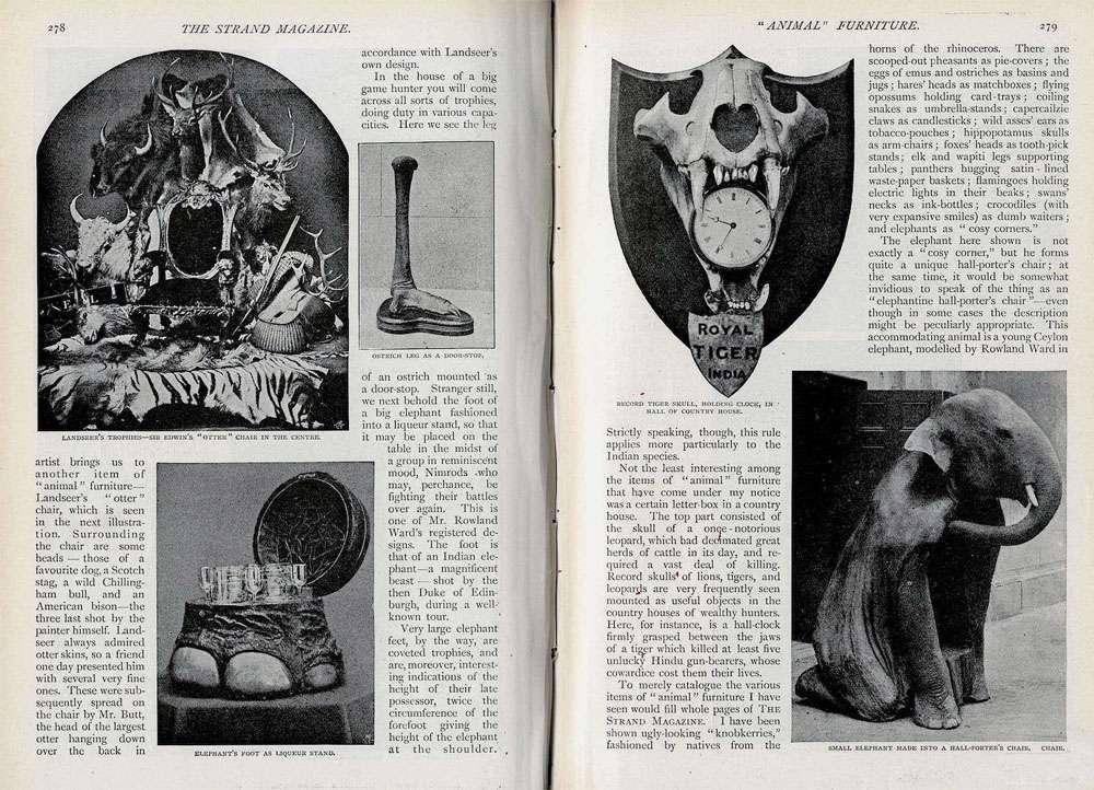 تبدیل حیوانات به اثاثیه,اخبار جالب,خبرهای جالب,خواندنی ها و دیدنی ها