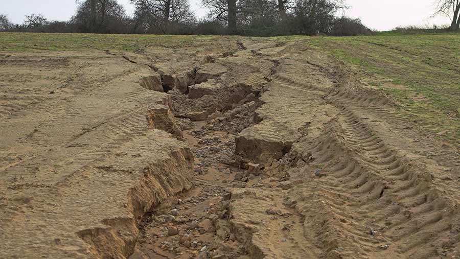 فرسایش خاک,اخبار علمی,خبرهای علمی,طبیعت و محیط زیست