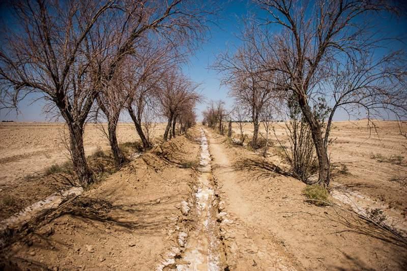 خشکسالی در اصفهان,اخبار اجتماعی,خبرهای اجتماعی,محیط زیست