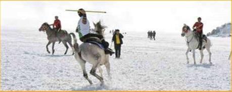 فستیوال اسب های طلایی,اخبار جالب,خبرهای جالب,خواندنی ها و دیدنی ها