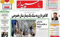 عناوین روزنامه های استانی چهارشنبه سوم بهمن ۱۳۹۷,روزنامه,روزنامه های امروز,روزنامه های استانی