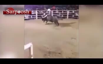 فیلم/ دعوای دستهجمعی وسط مسابقه گاو بازی!
