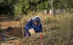 عکس زنان خنثی کننده مین در سریلانکا,تصاویر زنان خنثی کننده مین در سریلانکا,عکس خنثی کردن مین درسریلانکا